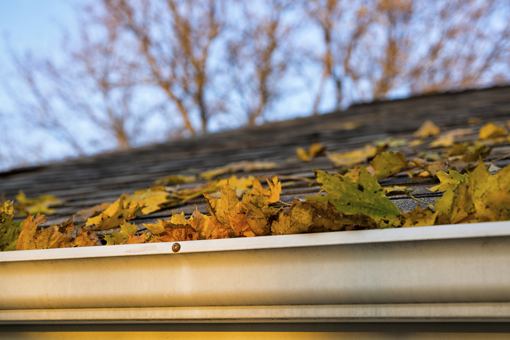 Gutter Repair Amp Replacement Somerville Medford Amp Boston Ma